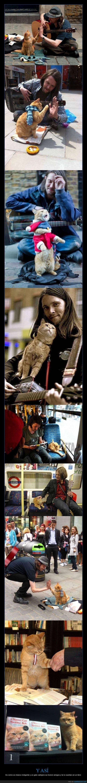 La historia de Bob el gatete y su dueño indigente - Es como un músico indigente y un gato callejero se hiciron amigos y te lo cuentan en un libro