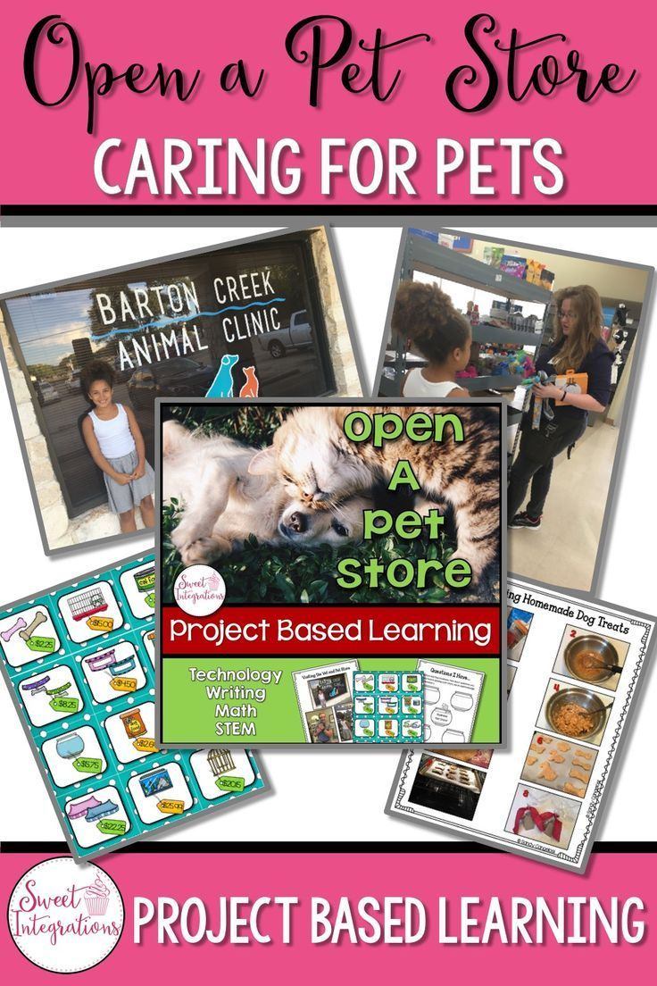 Project Based Learning Math And Writing Open A Pet Store Design