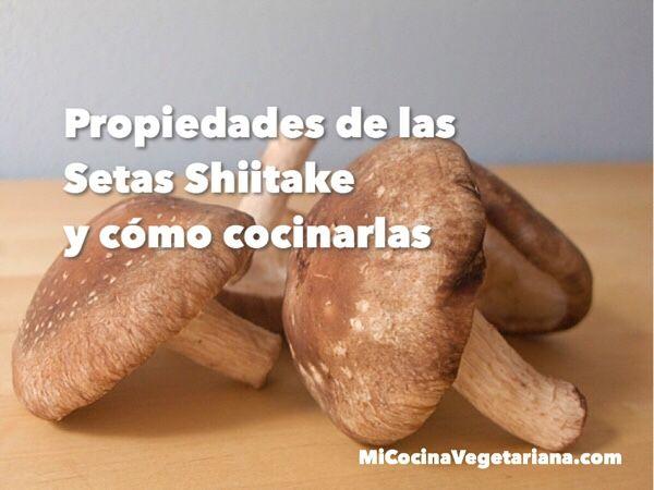 Propiedades de las Setas Shiitake y cómo cocinarlas