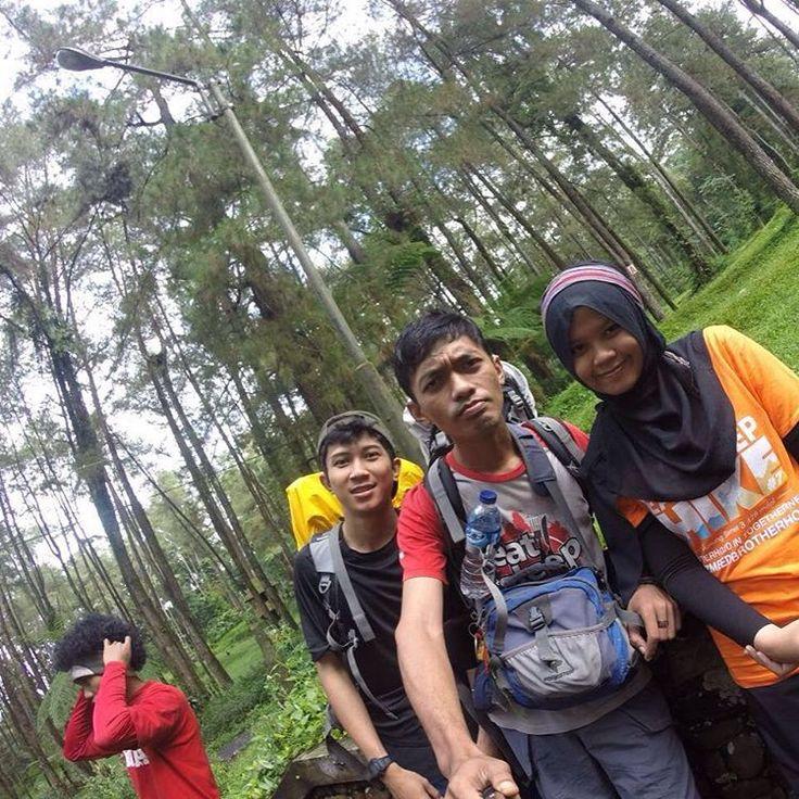 COZMEED INDONESIA® (@cozmeeder) • Instagram photos and videos