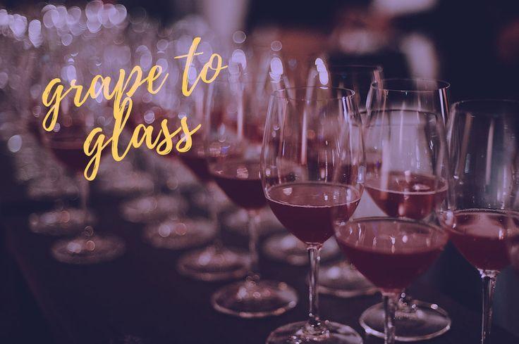 Weekly meetups and wine tastings with Australian Winemakers