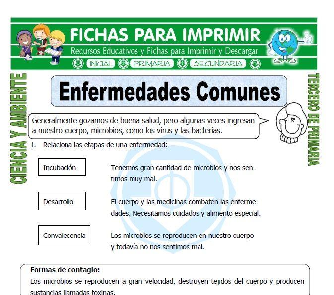 Ficha De Enfermedades Comunes Para Tercero De Primaria Enfermedades Comunes Tercero De Primaria Fichas