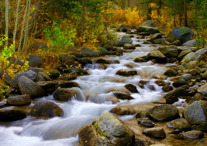 Bishop creek places i 39 ve been pinterest for Bishop creek fishing