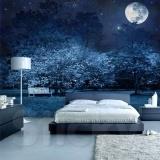 Φωτοταπετσαρία MAGIC NIGHT: Click to ZOOM