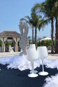 Il bicchiere giusto #wine #degustazione #schoott #bicchieri #VillaCaribe