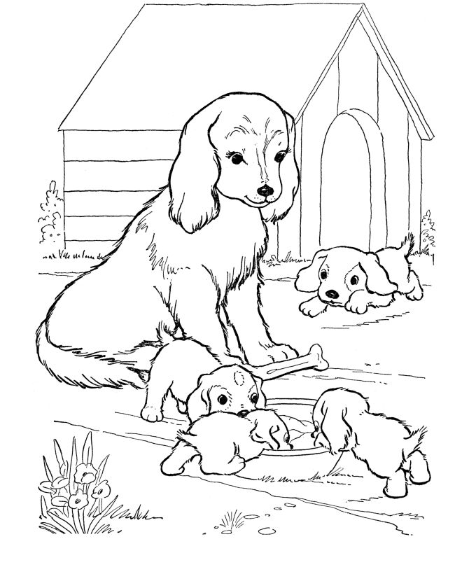 250 best Dog Coloring Pages images on Pinterest | Coloring books ...