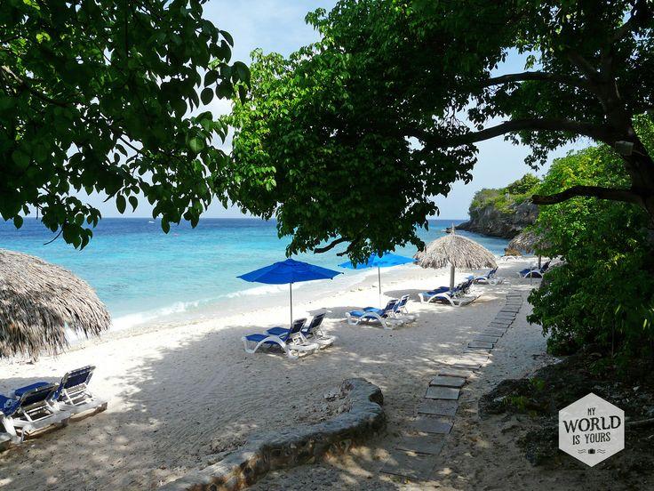 Even verderop ligt Playa Kalki, een schattig klein strandje met wat ligbedden en parasols van gedroogde palmbladeren. Volg het witte konijn (of de steiger) de zee in en je komt terecht in een van de mooiste duikspots van het eiland: Alice in Wonderland. Ontdek meer stranden van #Curaçao op http://www.myworldisyours.nl/places/strandroute #Playakalki #Curacao #Kalki #beach #strand #reizen