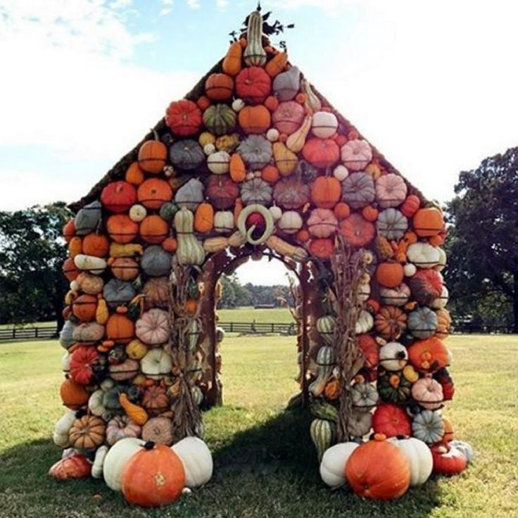 See my Pumpkin House in The Best Southern Instagram Photos of 2016 by @southernliving !  Photo Credit: @heatherbuglane
