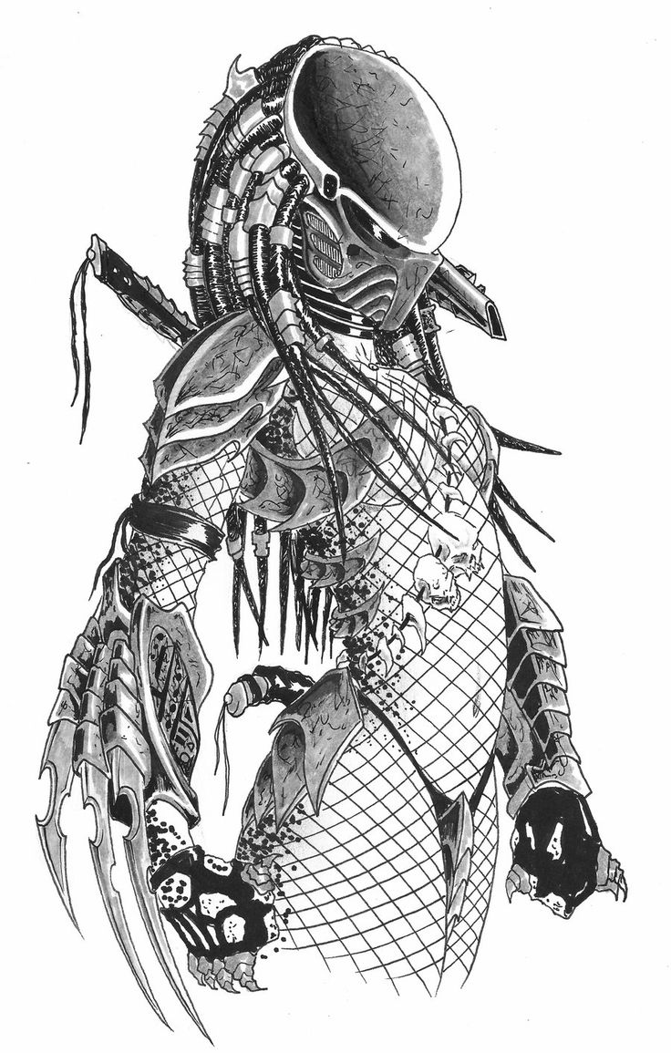 Predator Female!!! This is amazing!!!!! What an awesome costume!!!!!