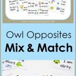 Owl Opposites Mix and Match ~ Free Printables