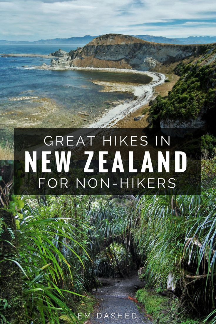 The Best Hikes in New Zealand for Not-Quite-Hikers