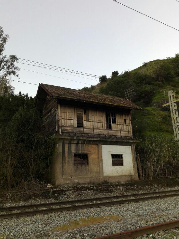 Abandonada en San Rosendo