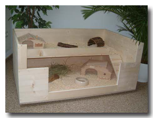 die besten 25 selber bauen meerschweinchenk fig ideen auf pinterest. Black Bedroom Furniture Sets. Home Design Ideas