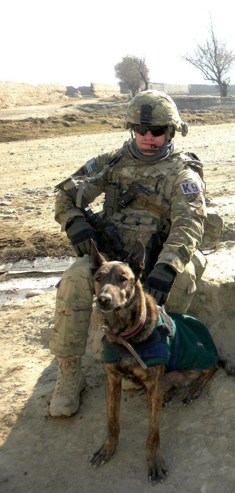 My name is SSgt John Makripodis. I am from Seymour-Johnson Air Force Base in North Carolina. My MWD Carlos (F337) was euthanized today due to cancer. MWD Carlos was 11 years old and had served 8 tours in Iraq, Afghanistan, Jordan, and Saudi Arabia. He was a legend at Seymour-Johnson and to all who worked with him. He was a Dutch Shepherd. He prevented the loss of life many  times. He was a true hero. MWD Carlos changed 6 handlers' lives in the past eleven years and he will never be…