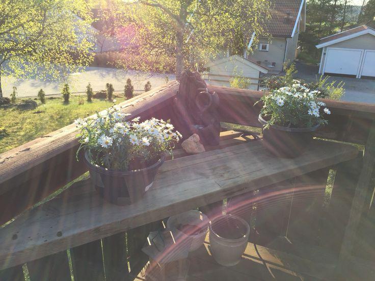 Utnytte et hjørne av terrassen som ellers ikke brukes til noe annet. Kuttet til gamle planker for å lage en hylle som en liten hage-fontene og blomster kan stå på. Dekor som er tilkommet i ettertid er stener og flere trefigurer som er laget etter at dette bildet ble tatt. Bruk fantasien og pynt med det som øyet begjærer. :) Eventuelle spørsmål: lunann@me.com