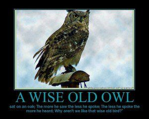 Wise Old Owl Quote #wisdom #inspiration
