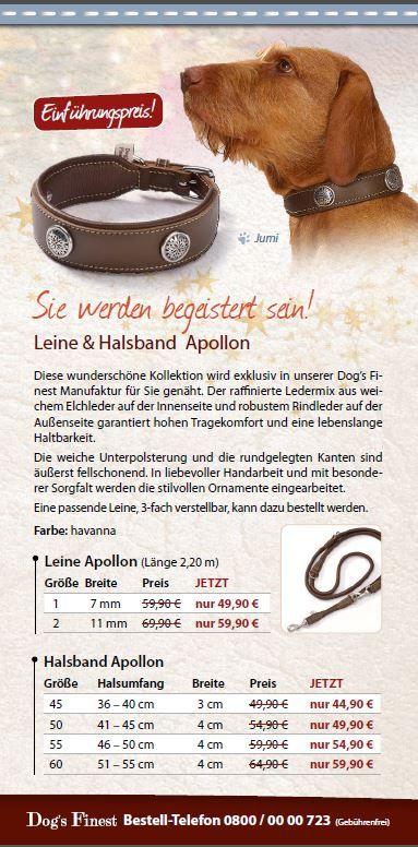 Diese Kombi aus Hundeleine und Hundehalsband ist sehr schön! Ich glaube, das kommt für meinen Kleinen unter den Weihnachtsbaum :)  www.dogsfinest.de