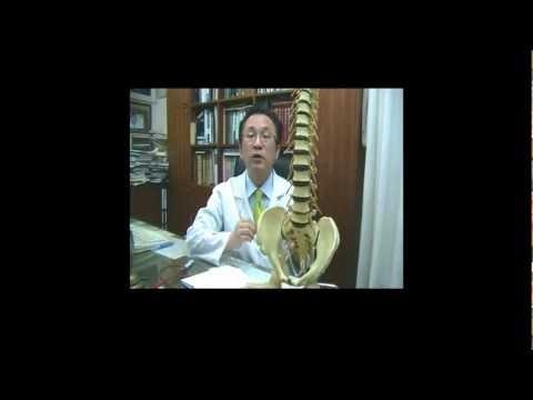 korean oriental medicine, remedy body-type, spine, lumbar, pelvic, hip remedy good for  diet, obesity, wooreedul oriental medical clinic. seoul, korea복부비만, 허벅지비만등을 치료하기 위한  일상생활에서 할 수있는  척추, 골반, 고관절 ,체형교정을 통한 다이어트방법입니다. 복부비만, 허벅지비만에  다이어트침, 물리치료, 약물요법 등의 각종 치료법을 하여도 살이 안 빠지는 경우는 체형교정을 통하여 바른 자세를 하여 줌으로써 다이어트를 할 수 있습니다. 디스크, 체형교정, 사상체질,다이어트, 통증 전...