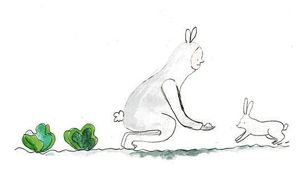 rabbit bunny drawing hand drawing