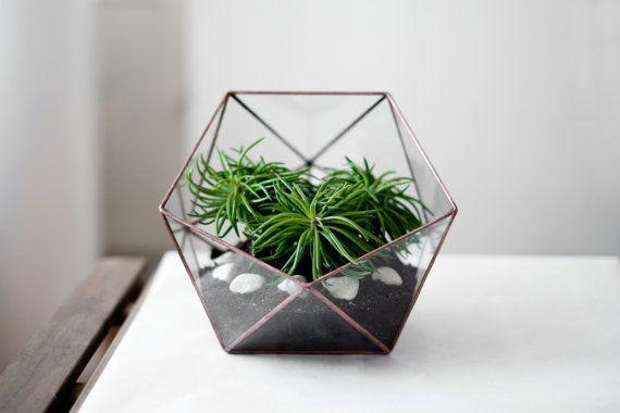glass terrarium icosahedron copper patina van boxwoodtree op Etsy