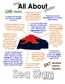 All About Starfish