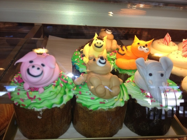 Animal cupcakes from d 39 amici 39 s bakery in lynn for Amici italian cuisine boston ma