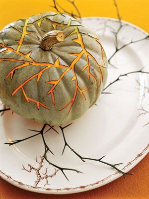Thorny Vines Pumpkin: The thorny vines on this antique transferware platter suggested the delicate design on this 'Blue Hubbard' pumpkin.