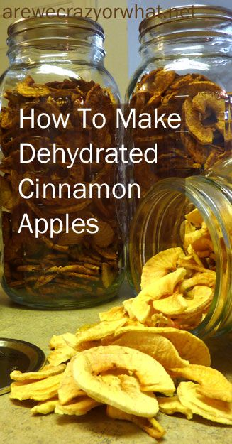 Step by Step direction for making dehydrated cinnamon apples. #beselfreliant