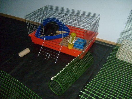 Zagroda dla króliczka. - Króliki domowe i inne zwierzęta