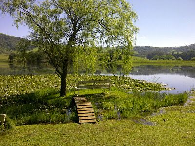 Peace and tranquility reign supreme at Beacon Vlei, Midlands Meander, South Africa. www.midlandsmeander.co.za. Favorite places and spaces.
