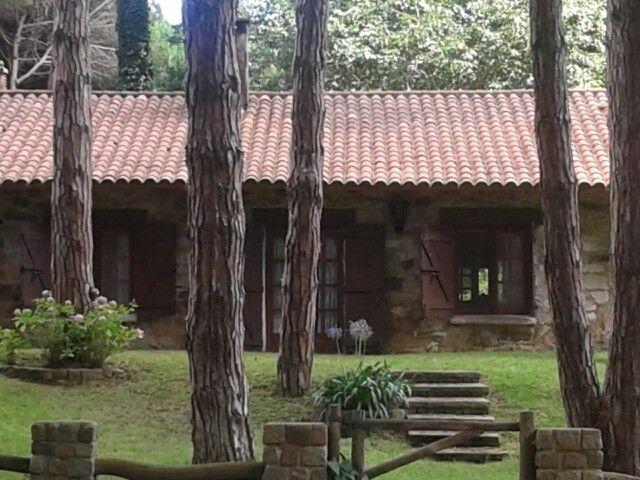 Hermosa cabaña en Carilo