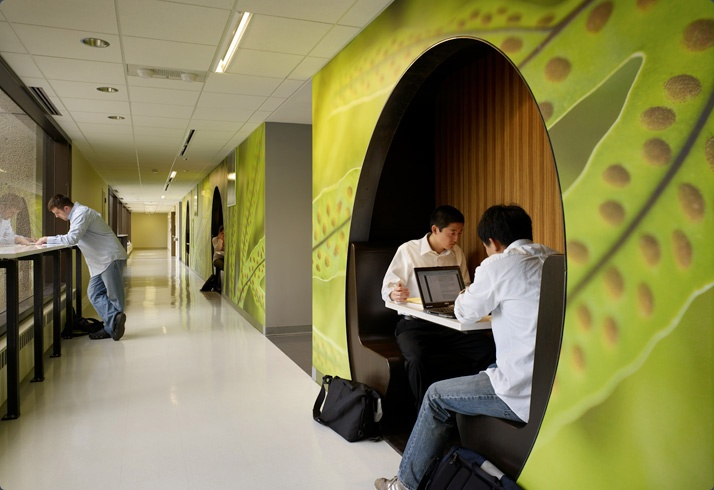 Built In Collaborative Space Built Environments