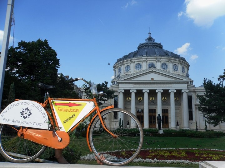 Thomas  Antiques bike at Atheneum, Bucharest