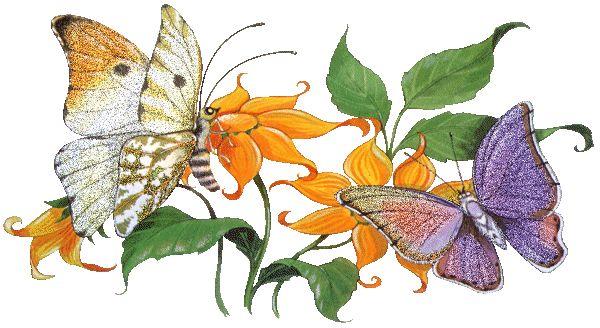 mejores-imagenes-en-movimiento-de-amor-mariposas.gif (600×328)