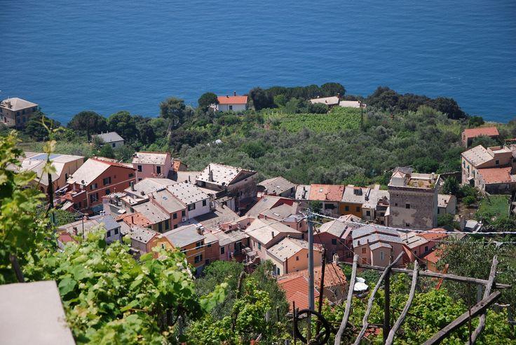 Near the Sea - Framura village from Costa - Framura, La Spezia, Italy.