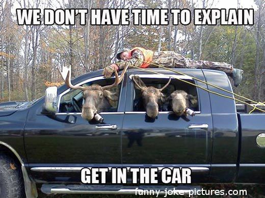 Funny Moose Cartoons | Funny Moose Hunting Redneck Justice | Funny Joke Pictures