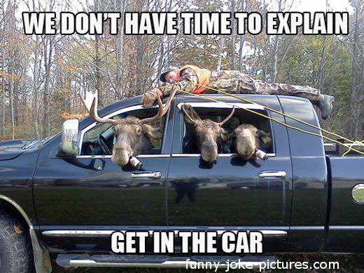 Funny Moose Cartoons | Funny Moose Hunting Redneck Justice | Funny Joke Pictures