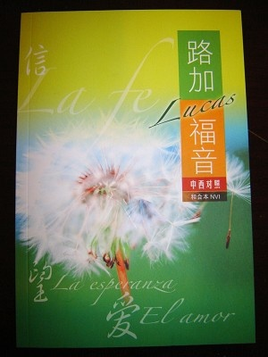 Gospel According to Luke / Chinese - Spanish Bilingual Edition