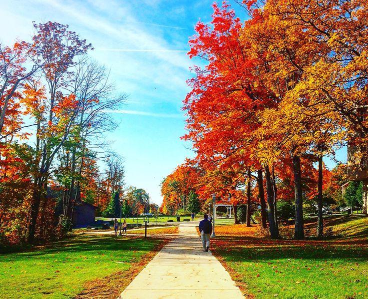 #PittJohnstown fall day upj.pitt.edu/visit