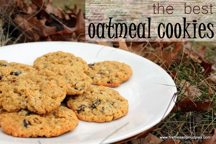 The Best Oatmeal Cookies - Fireflies and Mud Pies
