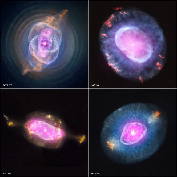 A Planetary Nebula Gallery Composite  Credit: X-ray: NASA/CXC/RIT/J.Kastner et al.; Optical: NASA/STScIThis gallery shows four planetary nebulas from the first systematic survey of such objects in the solar neighborhood made with NASA's Chandra X-ray Observatory. The planetary nebulas shown here are NGC 6543, also known as the Cat's Eye, NGC 7662, NGC 7009 and NGC 6826. This image was released Oct. 10, 2012.