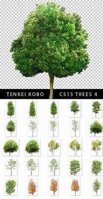 Árboles de Alta calidad en PSD con fondo transparente (Ultra High Quality PSD Trees with transparent background) | Recursos 2D.com