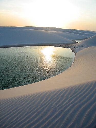 Sand dunes and lagoon, Lençóis Maranhenses National Park, Maranhão, Brazil. Photo by Ricardo Mendonça Ferreira.