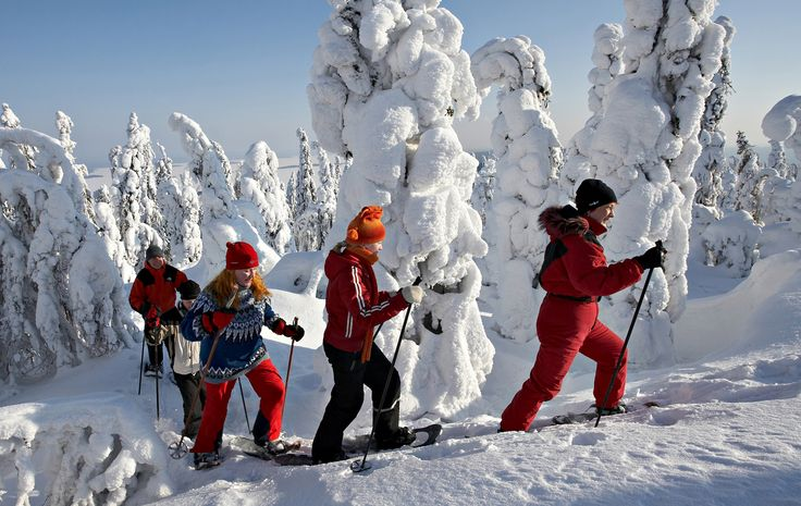 Koli Family Winter Holiday, 2-4 families Trees loaded by snow like in fairy tales and open views as far as eye can see. Into the Finnish national landscape you get best by snowshoeing or by skiing. Not forgetting relaxation after the exercise.