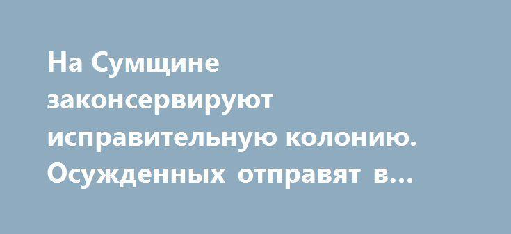 На Сумщине законсервируют исправительную колонию. Осужденных отправят в другие колонии http://sumypost.com/sumynews/sobytiya/na-sumshhine-zakonserviruyut-ispravitelnuyu-koloniyu-osuzhdennyh-otpravyat-v-drugie-kolonii/  Министерство юстиции определило 13 учреждений исполнения наказаний, которые подлежат оптимизации. Среди них и Шосткинская исправительная колония. Такую новость сообщил и. о. начальника ШИК-66, подполковник внутренней...