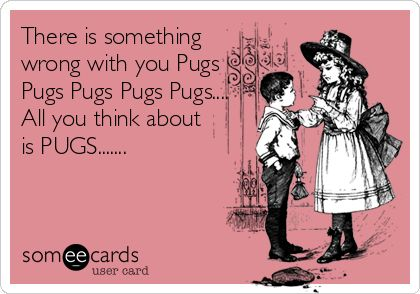 There is nothing wrong with that. They are freaking adorable, and sometimes better than people. lol #pugs