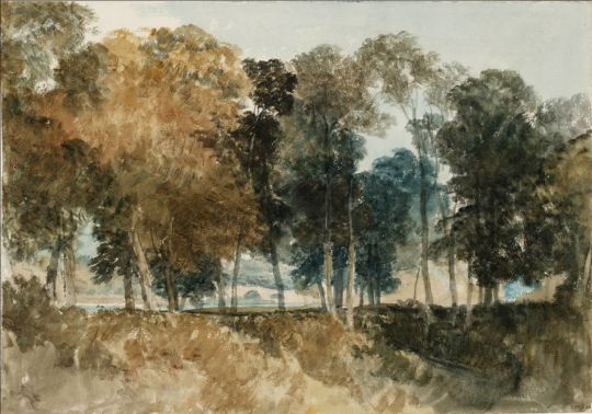John Mallord William Turner (Brit. 1775-1851), Trees by River Thames : Bridge in the Distance, 1805, graphite and watercolor on paper, 25.7 x 36.8 cm, London, Tate