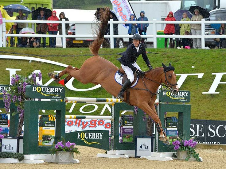 Equi-Ads just posted this... Nina Barbour says thank you as curtain falls on Bolesworth 2016