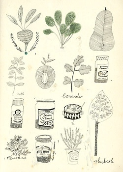 Recipe book illustrations.