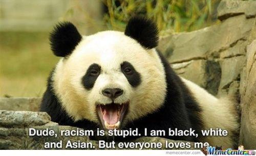 Racism is stupid